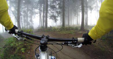 <strong>De 5 mooiste fietsroutes in Nederland</strong>
